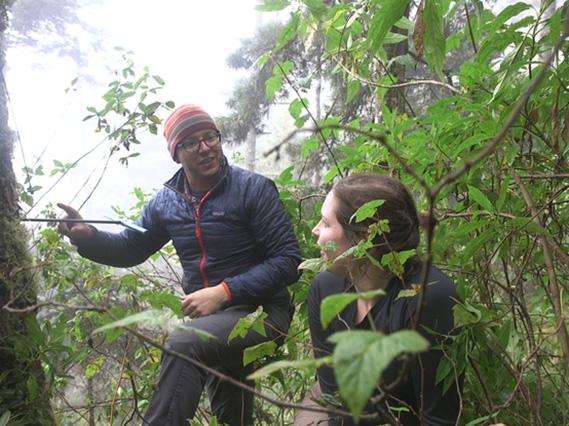 Professor Kevin Anchukaitis and graduate student Talia Anderson coring trees in Guatemala.