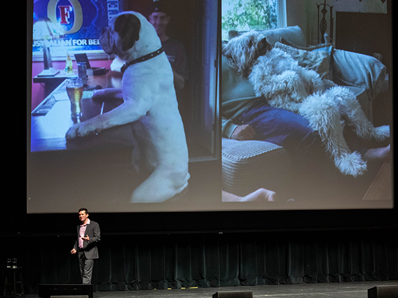 Evan MacLean talking about dogs