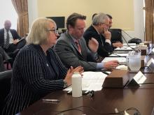 University of Arizona geographer Diana Liverman testified on April 30, 2019, before the House Select Committee on the Climate Crisis.