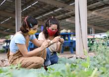 two young women with agrivoltaics