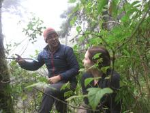 Professor Kevin Anchukaitis and graduate student Talia Anderson coring trees in Guatemala.