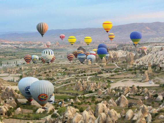 Multiple hot air balloons over landscape